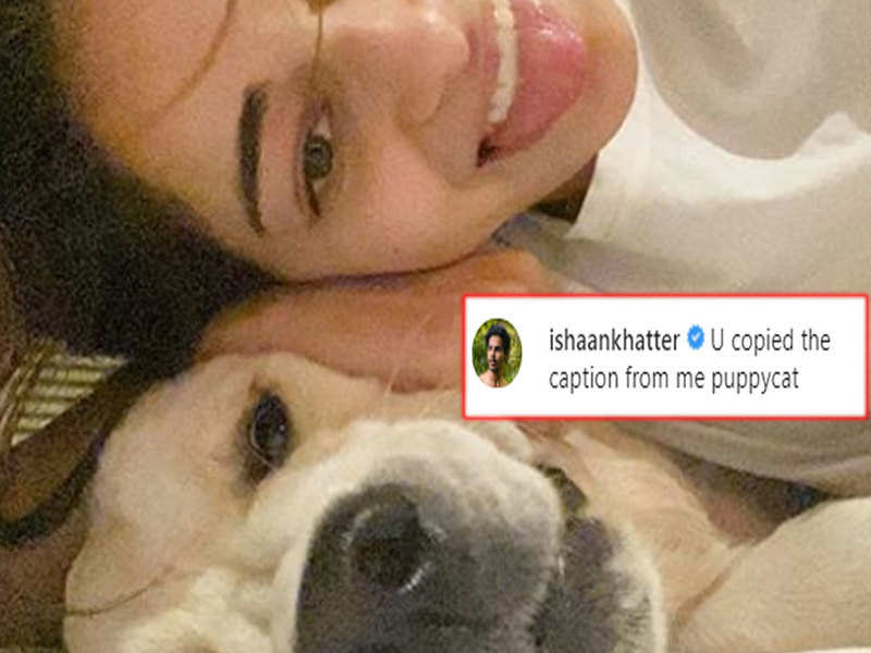 Ishaan Khatter tags Ananya Panday as 'puppycat', as he blames the actress for copying his caption