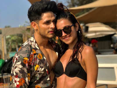 Priyank 'Confirms' relationship with Benafsha