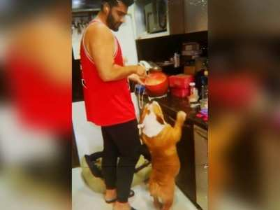 Watch Arjun Kapoor's dog Maximus dancing