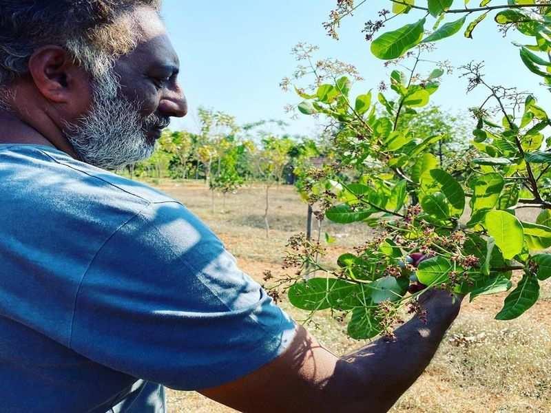 Prakash Raj enjoys his time at his farmhouse
