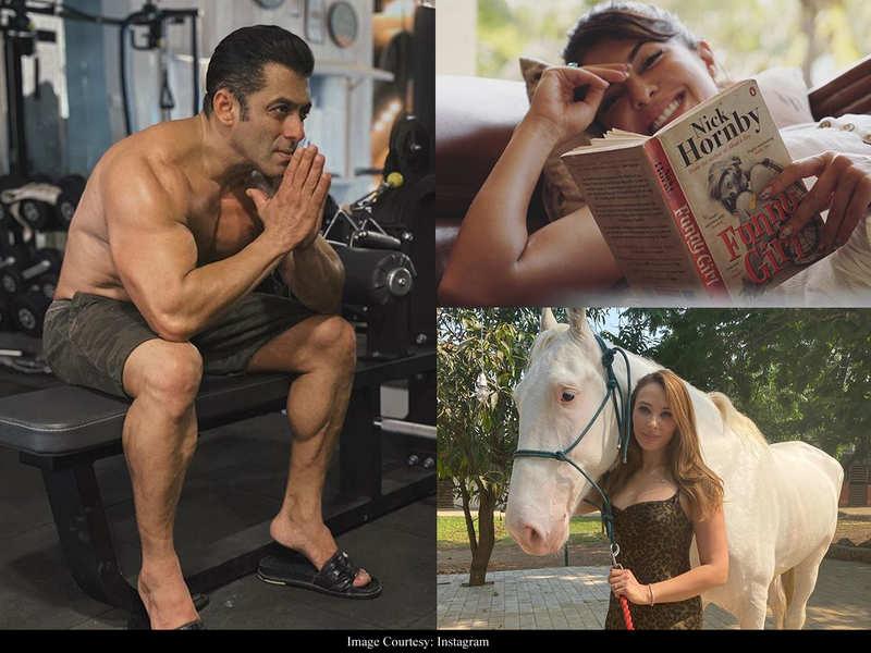 Jacqueline Fernandez, Iulia Vantur enjoying farm life with Salman Khan at his Panvel farmhouse?