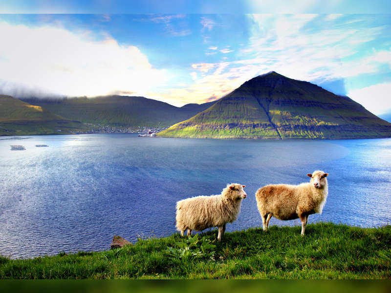 Faroe Islands is offering virtual vacation with a remote-controlled tour guide