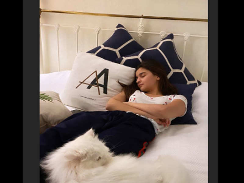 Alia Bhat pretends to be napping with her pet cat and we just can't get over the adorable click