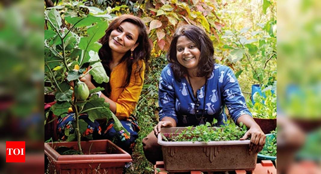Millennials Love For Gardening Is Blooming In A Big Way Times Of India
