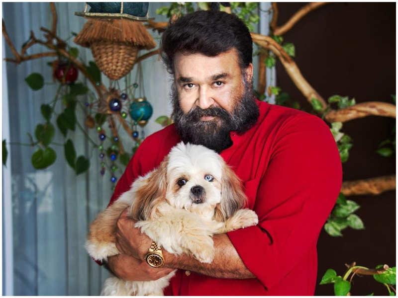 Meet Bailey, Mohanlal's pet dog!