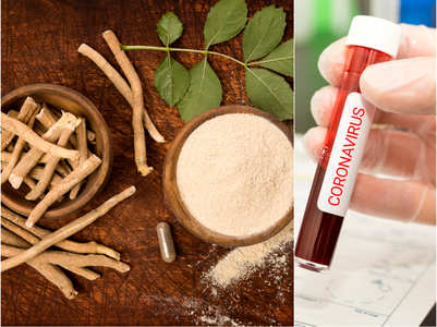 Ashwagandha against coronavirus: Researchers from IIT-Delhi and Japan's AIST make an interesting discovery about the Ayurvedic drug
