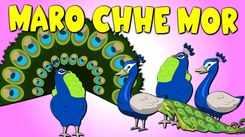 Watch Popular Children Gujarati Nursery Rhyme 'Maro Che Mor' for Kids - Check out Fun Kids Nursery Rhymes And Baby Songs In Gujarati.