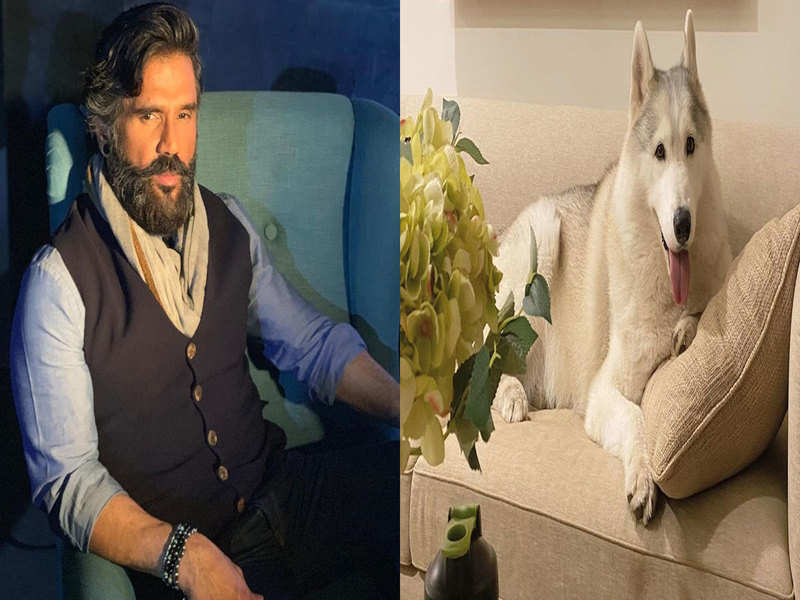 Suniel Shetty shares an adorable picture of his beloved furry pal; calls him a couch potato