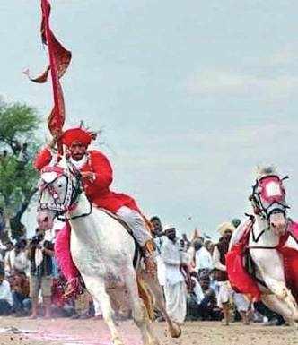Wari horses make a 5-ft journey