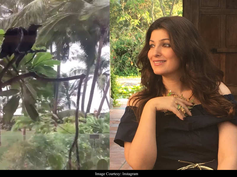 Twinkle Khanna shares a glimpse of billowing winds as cyclone Nisarga hits Maharashtra – watch video
