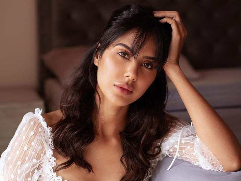 Cyber crime alert! Fake chats created in the name of Sonam Bajwa, actress shares screenshot on social media