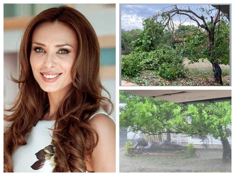 Watch: Iulia Vantur shares videos of cyclone Nisarga's impact on Salman Khan's Panvel farmhouse