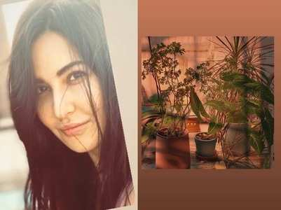 Katrina Kaif shows of her photography skills