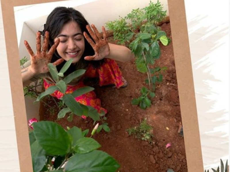 Rashmika Mandanna shares picture of her planting saplings