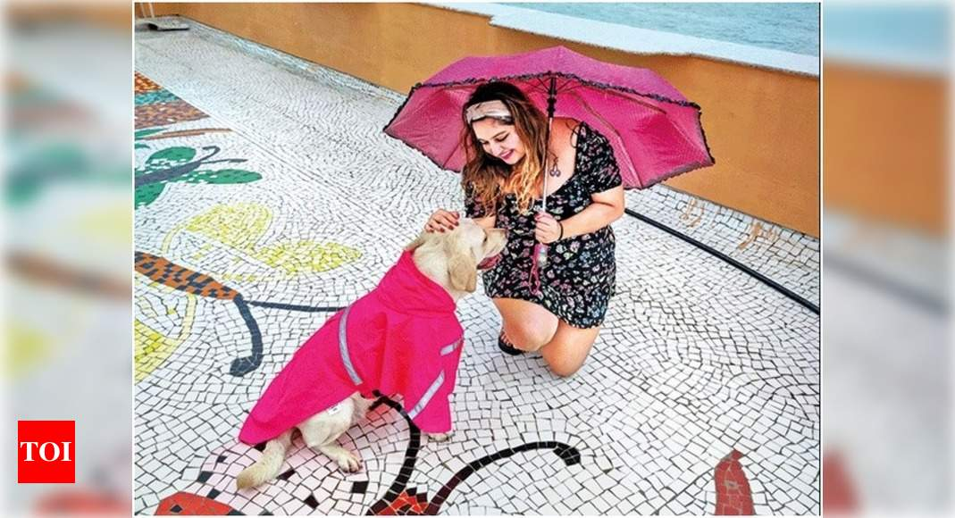 Mumbai's pets put their stylish paws forward in the rains