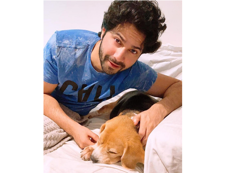 Varun Dhawan tries to wake his furry friend to watch UFC match; shares paww-dorable pictures