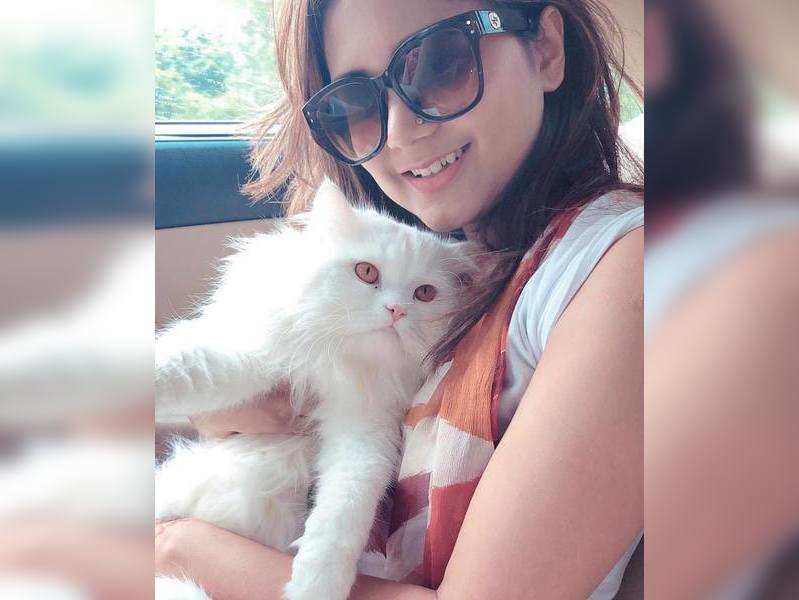 Out of my four pets, Alex, my cat, is my best friend, says Bangladeshi singer Noor E Rezia Momo