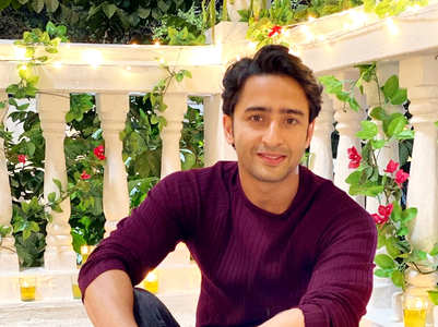Shaheer Sheikh's childhood ambition
