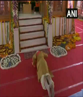 Watch: PM performs bhoomi pujan for Ram temple