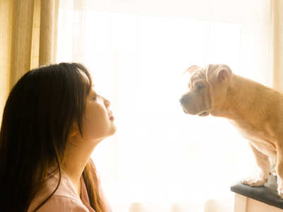 What your choice of dog breed tells about your personality