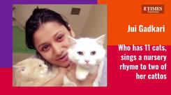 #CutenessAlert!  On International Cat Day, let us introduce you to your favorite Marathi celebs' feline babies