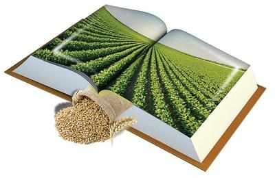 Growing beyond farms, agriculture yielding great scope in diverse fields