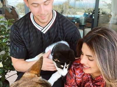 Priyanka welcomes new furry friend