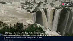 In its monsoon glory, Jog Falls begs to be visited