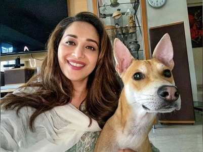 Madhuri poses with her dog for a refreshing pic