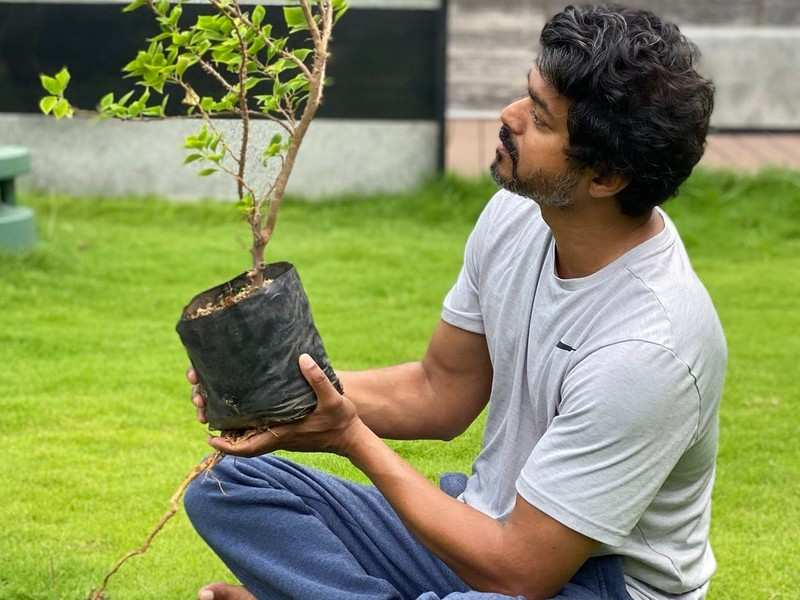Vijay sets a big example as a large number of fans take up Green India Challenge