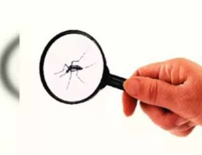 West Nile virus claims first victim in Spain