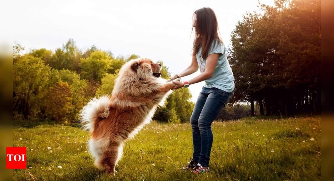 Sheetal deshmukh: Here's how you can become environmentally-conscious pet parents