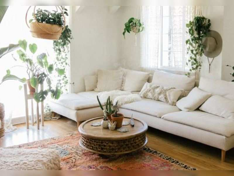Indoor plants, ambient lighting, recycling old furniture: Give your home a makeover