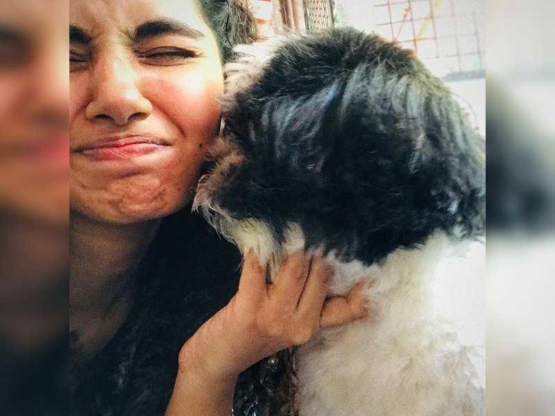 Anupama Parameswaran: I lost two of my dogs during lockdown