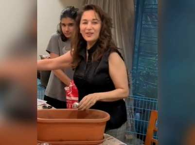 Madhuri shares a video of her kitchen garden