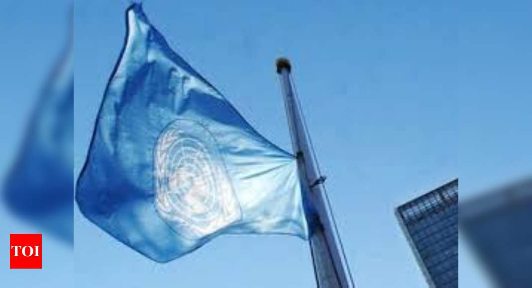 India at UN cautions against linking environmental degradation to peace and security – Times of India