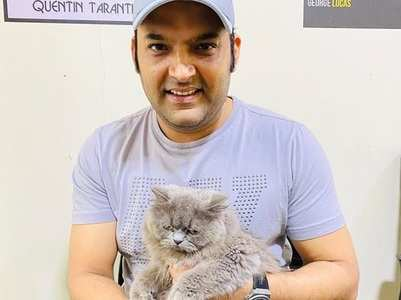 Kapil's love for cats wins over netizens