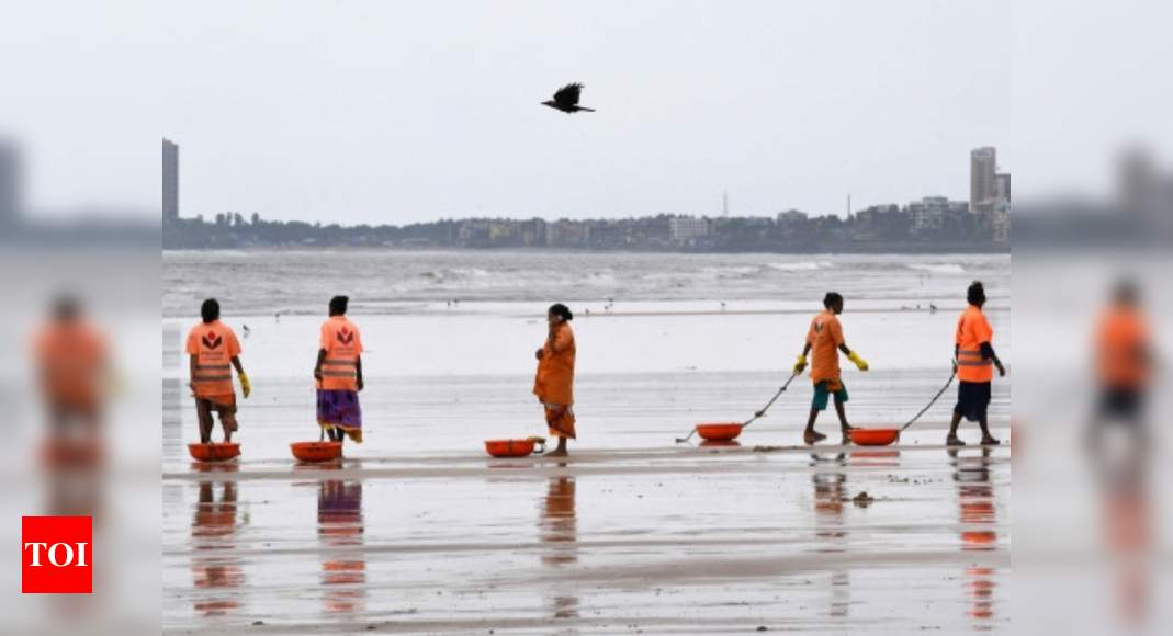 India seeks Blue Flag eco-label for its eight beaches, launches its own tag 'BEAMS' for clean beach