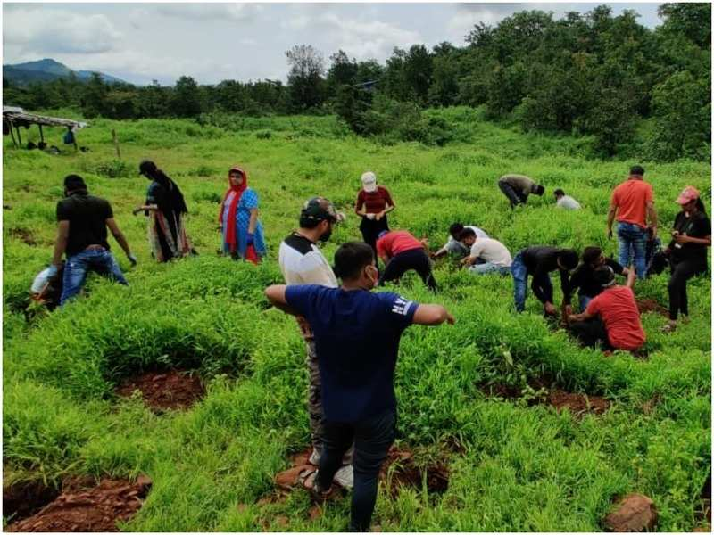 During the tree plantation event at Wada