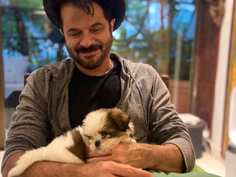 Anil Kapoor's adorable new pup has an interesting Hollywood connection; find out