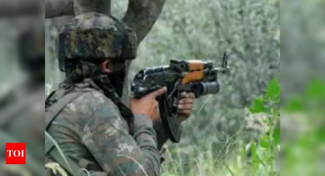 2 Lashkar terrorists killed in Pulwama encounter | India News – Times of India