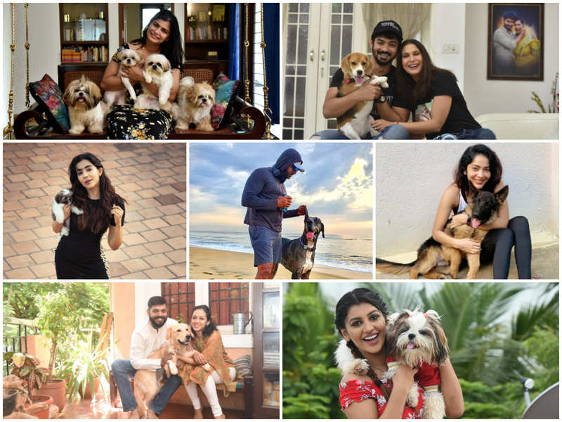 #LockdownSurvival: Arun Vijay to Yashika, celebrities credit their pets for helping them cope with lockdown