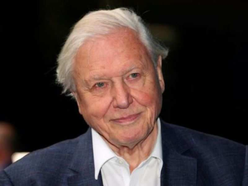 PHOTO: Broadcaster and film maker David Attenborough attends the premiere of Blue Planet II at the British Film Institute in London, Britain, September 27, 2017. REUTERS/Hannah McKay/File Photo