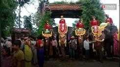 Dasara elephants reach Mysuru from their forest camp