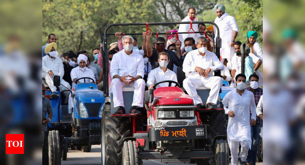 Farm laws protest: Rahul Gandhi allowed to enter Haryana after drama at border - Times of India