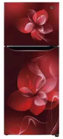 LG GL-N292DSDY 260 Ltr Double Door Refrigerator