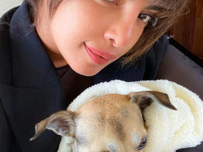Priyanka poses with her paww-fect co-worker