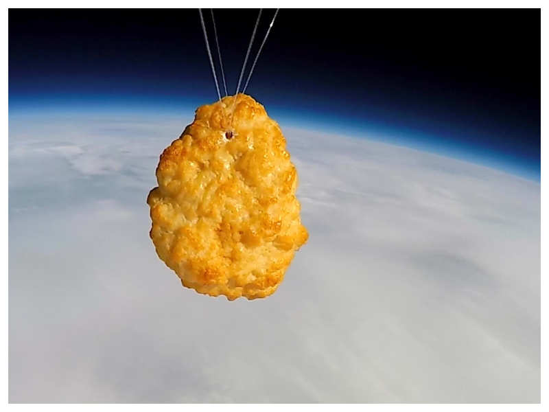British company launches Chicken Nugget into space, netizens are excited
