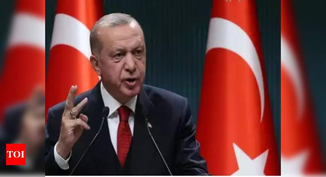 Erdogan has close links with terrorist organisations, including ISIS: Swedish Nordic Monitor - Times of India