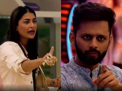 BB14: Pavitra calls Rahul a senseless man
